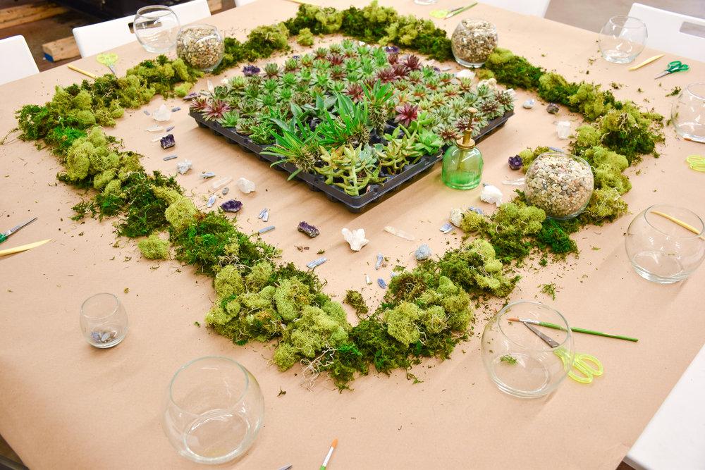 Succulent + Crystal-3.jpeg