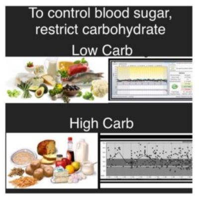 Dr. Bernstein highlights the difference between a high- and low-carb diet on blood sugars.