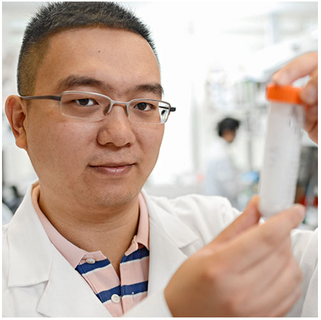 Zhen Gu, researcher from University of North Carolina