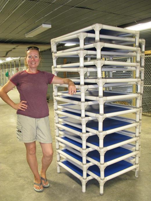 Regina Humane Society Kuranda bed donation