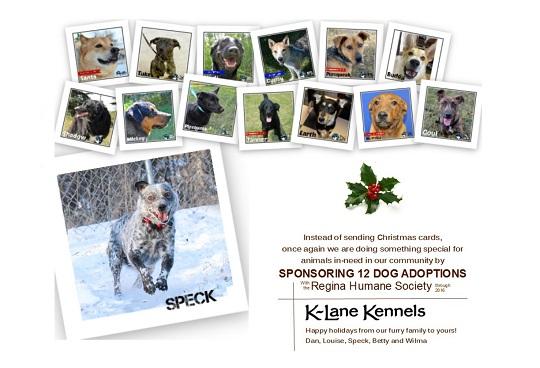 K-Lane Kennels - K-Lane Kennels once again sponsors dog