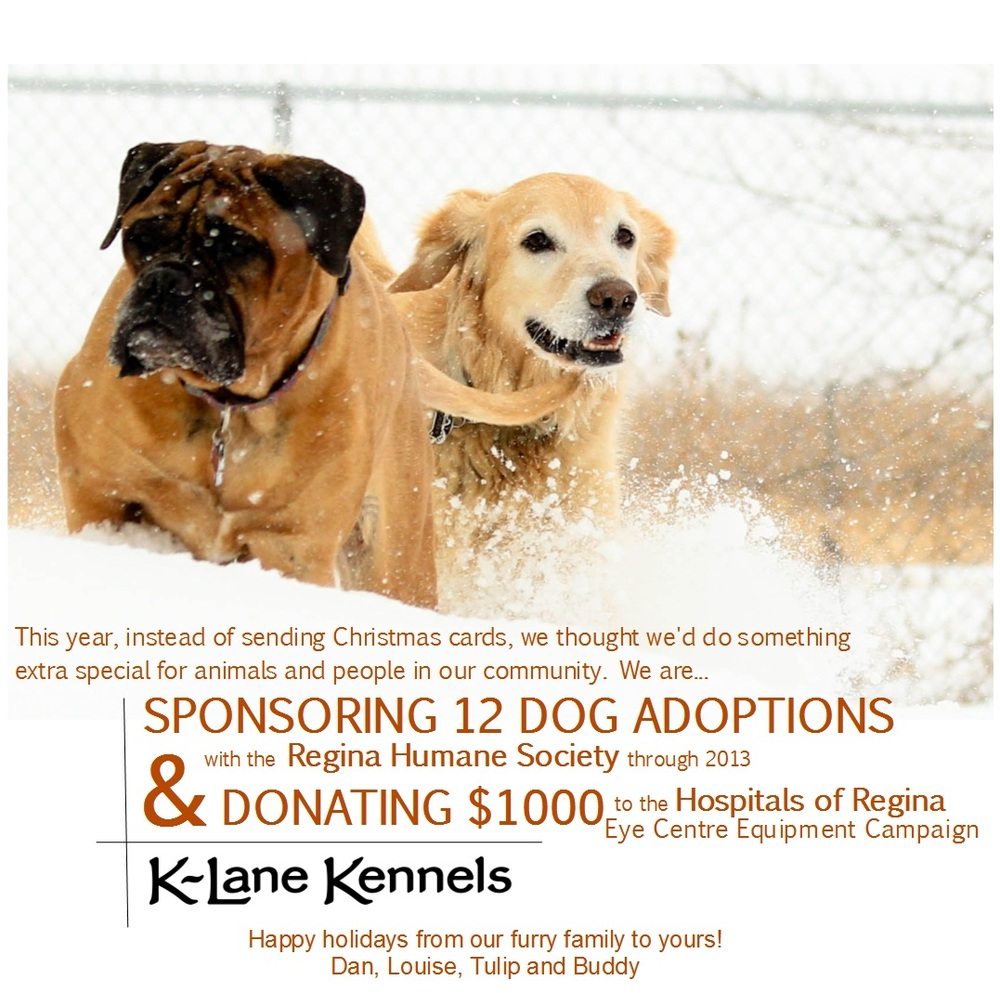 K-Lane is sponsoring 12 dog adoptions to the Regina Humane Society ...