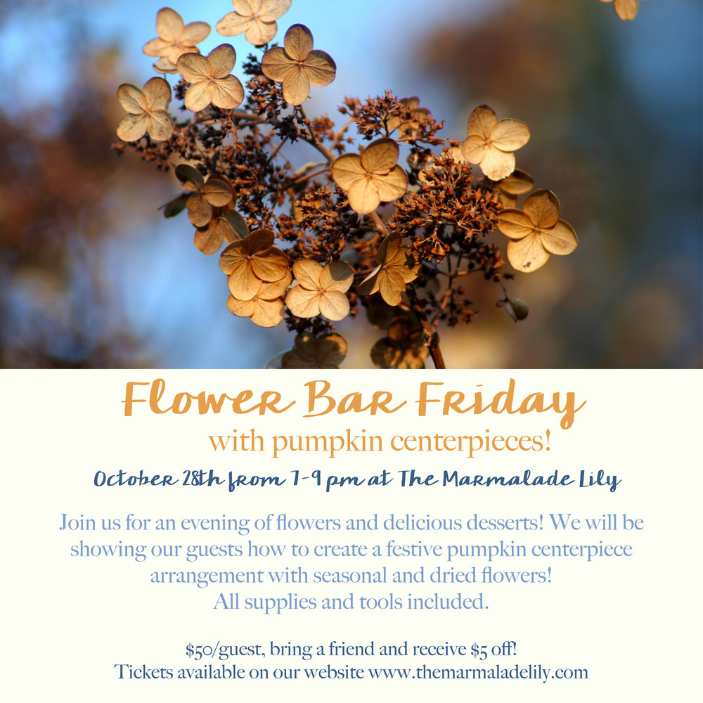 Flower Bar Friday October 2016
