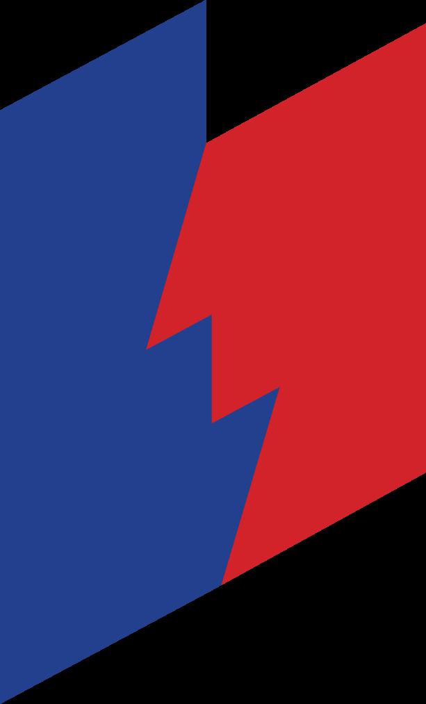 DWS logo.png