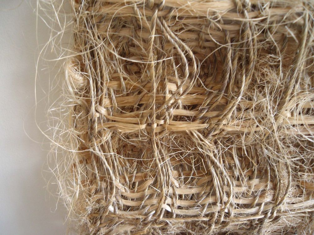 Fieldnotes, Hiroko Takeda, 2007, NY Studio, 59%22h x 28%22w, mixed natural fibers.jpg