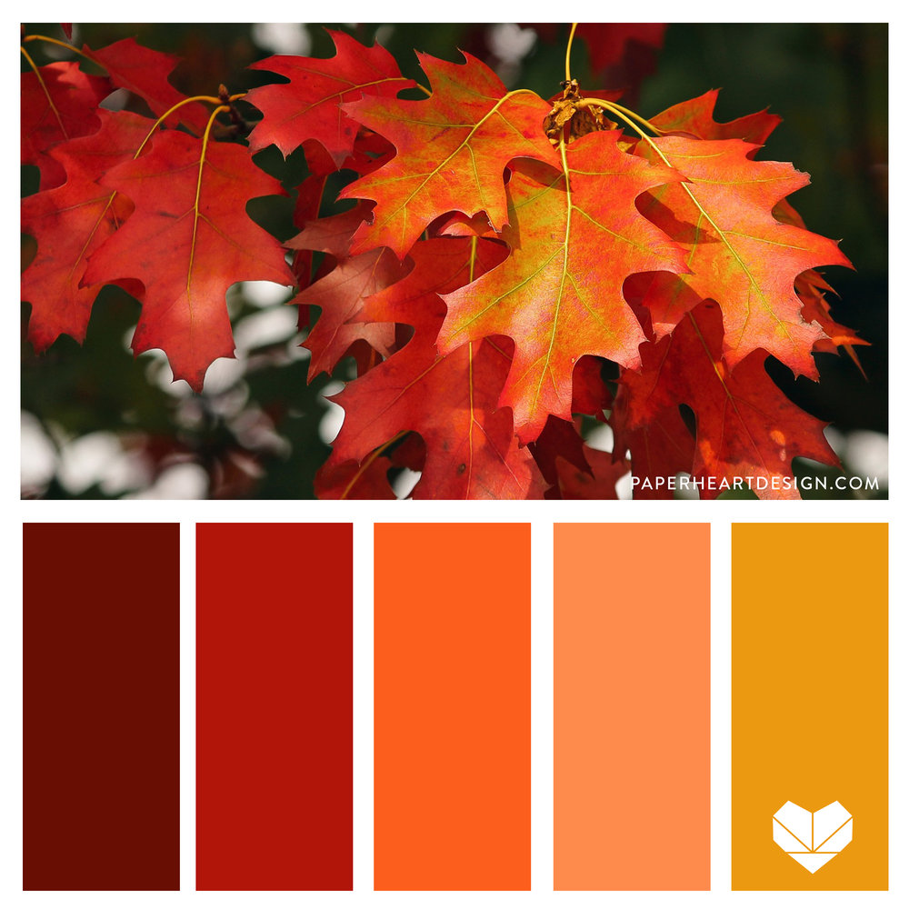 Fall inspired Color palette. Oak leaf. Warm color scheme. Crimson, red, rust, orange, peach, mustard yellow.