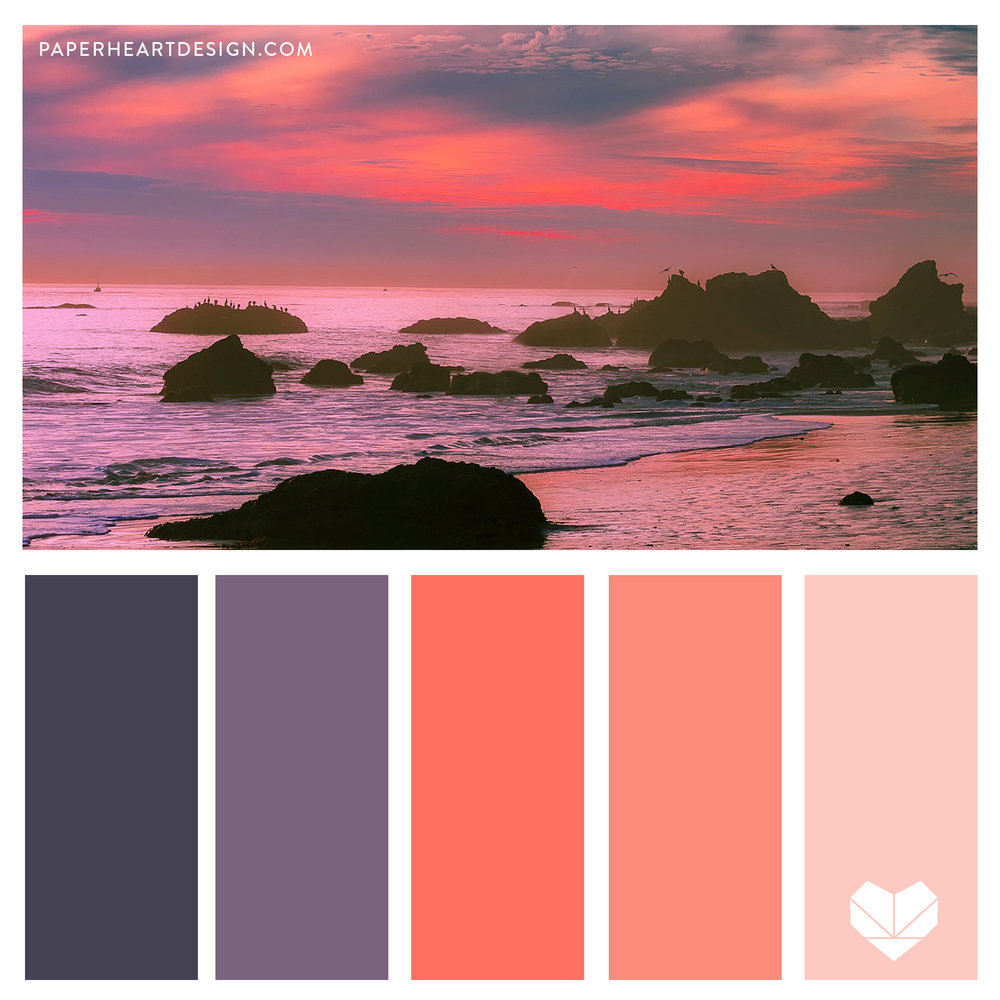 Living Coral, Pantone Color of the Year. Purple. Pink. Coral. Sunset. Water.