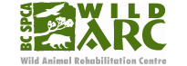 Wild ARC is southern Vancouver Islands only Wild Animal Rehabilitation Centre and treat almost 2,500 wild animals annually from throughout the region.