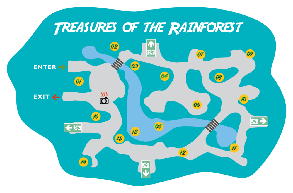treasures of the rainforest.png