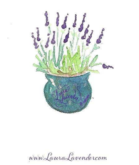 Pot of Lavender in bloom
