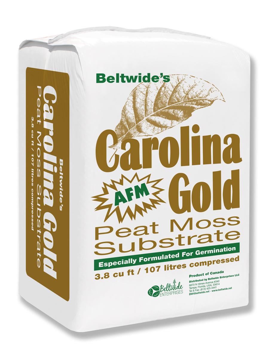 G0810-Beltwide---CGOLD--B_wb.jpg