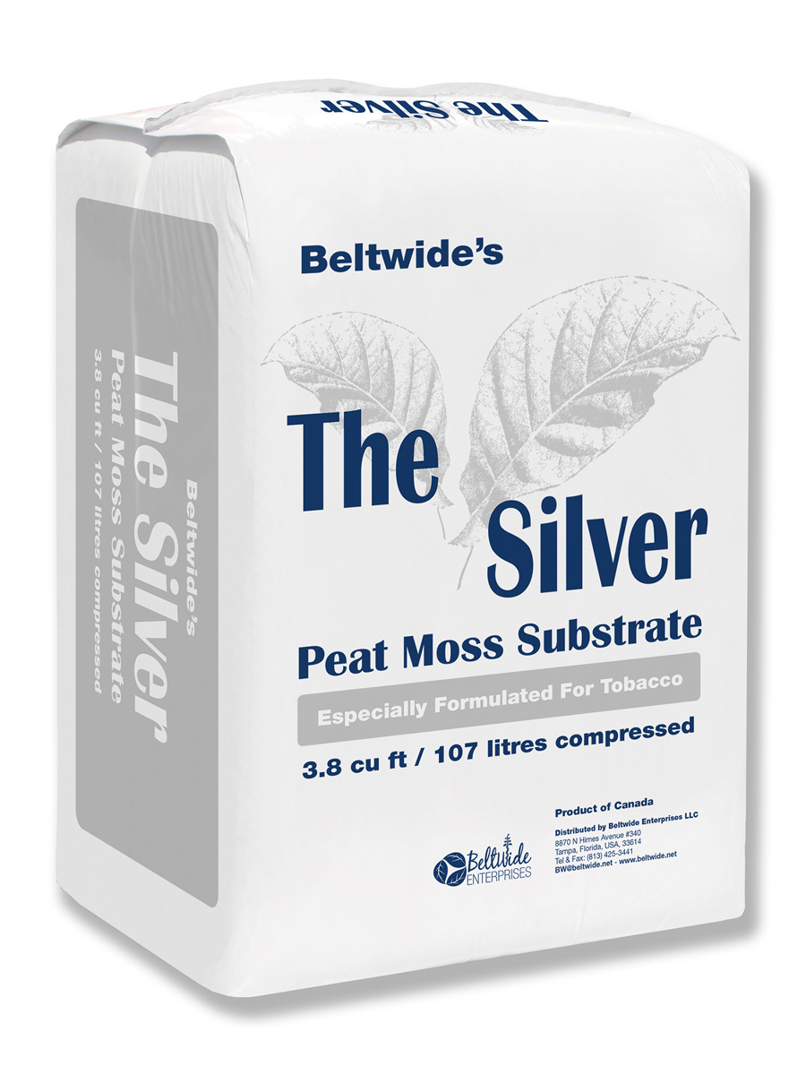 G0810-Beltwide---THE-SILVER---B_wb.jpg