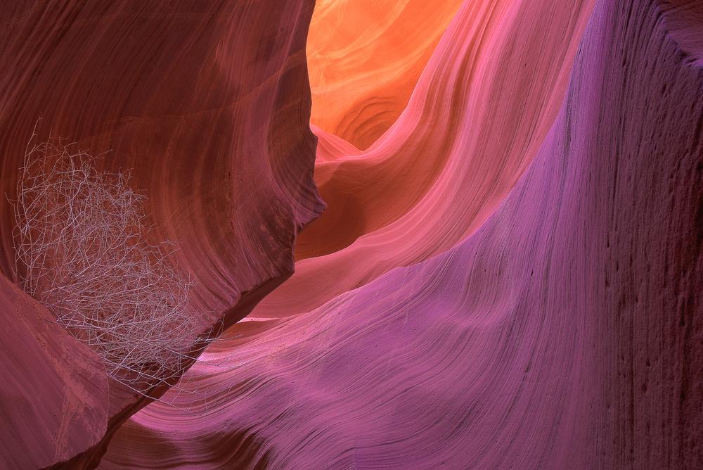 canyonWeb Prepared.jpg