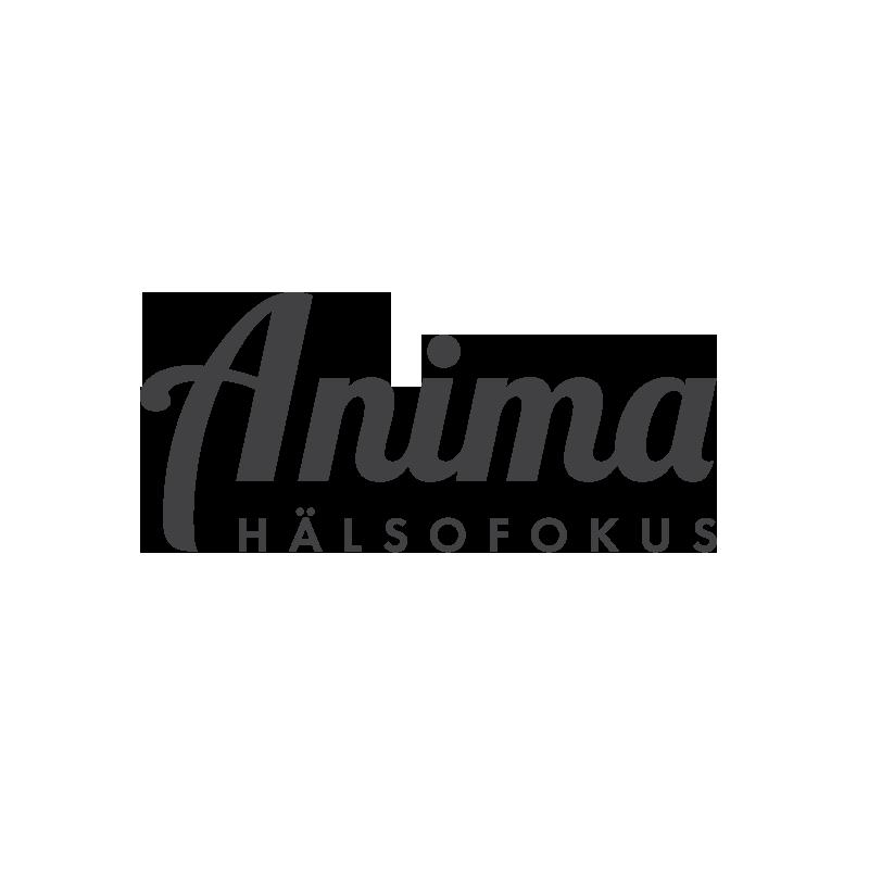 logotyp_anima_v2.png