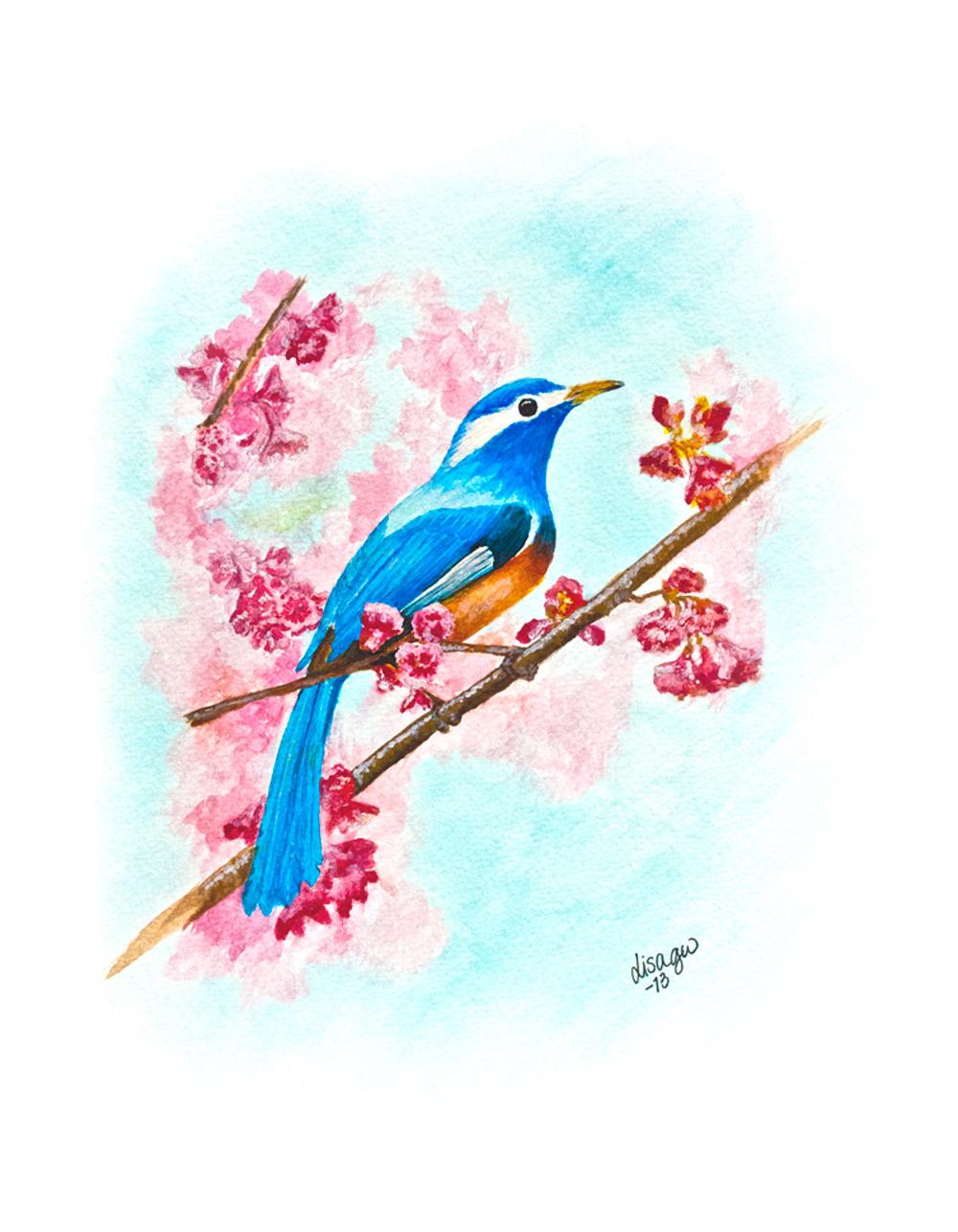 springbird_akvarell_lisa grelsson wiik.jpg