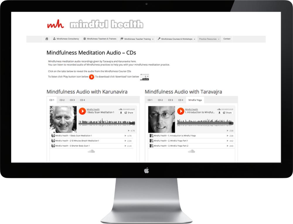 Mindful Health www.mindfulhealth.png