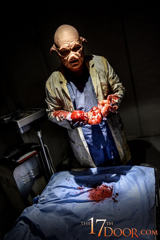 the-17th-door-pig-doctor.jpg