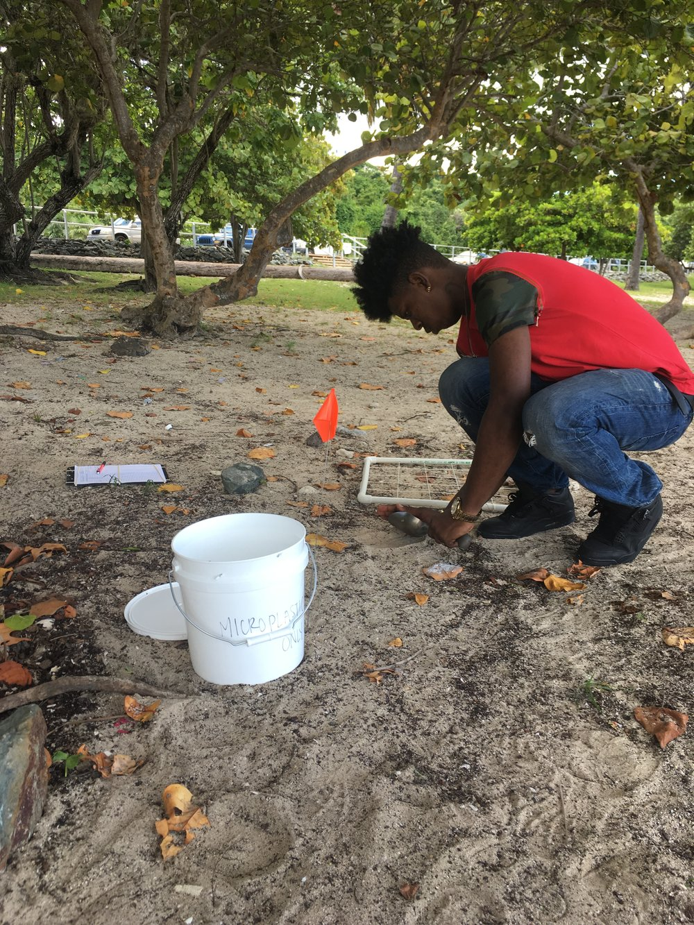 D'Kai Joseph, UVI undergraduate volunteer, collects the top layer of sand 1 cm deep. The white quadrant frame seen here provides a guide to the sample area. The sand is collected into the labeled bucket and taken to the lab for processing. It will undergo a series of density separation processes to separate plastic from natural materials.