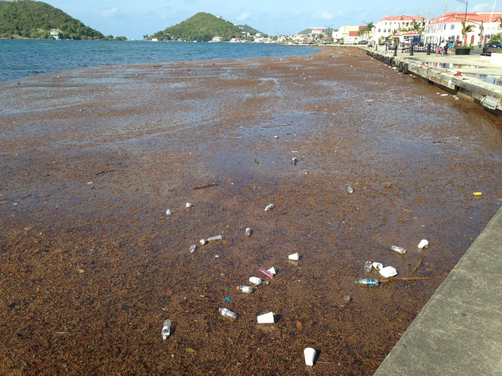 After heavy rainfalls, trash collects along the waterfront in St. Thomas Harbour.