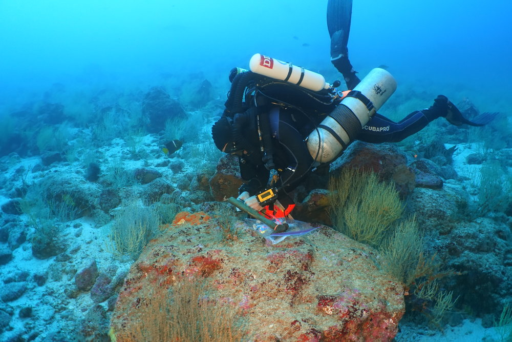 Very few universities with marine science programs have rebreathers. UVI is has four. In this photo Dr. Tyler Smith installs water temperature probes at 165 feet off Wolf Island, Galapagos, Ecuador.