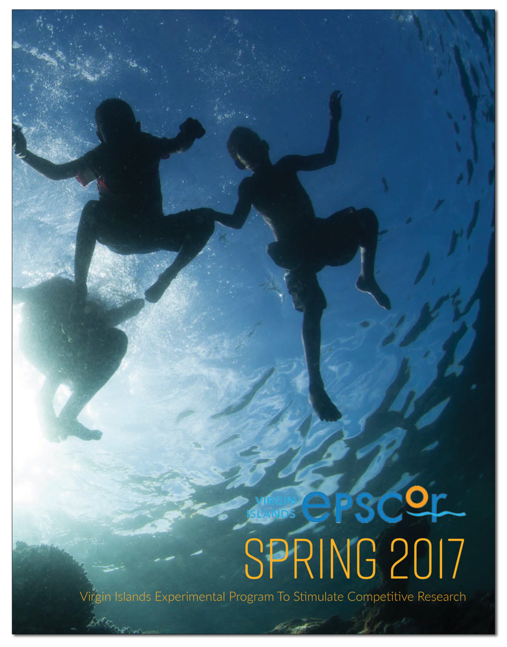 VI-EPSCoR Spring 2017 Issue