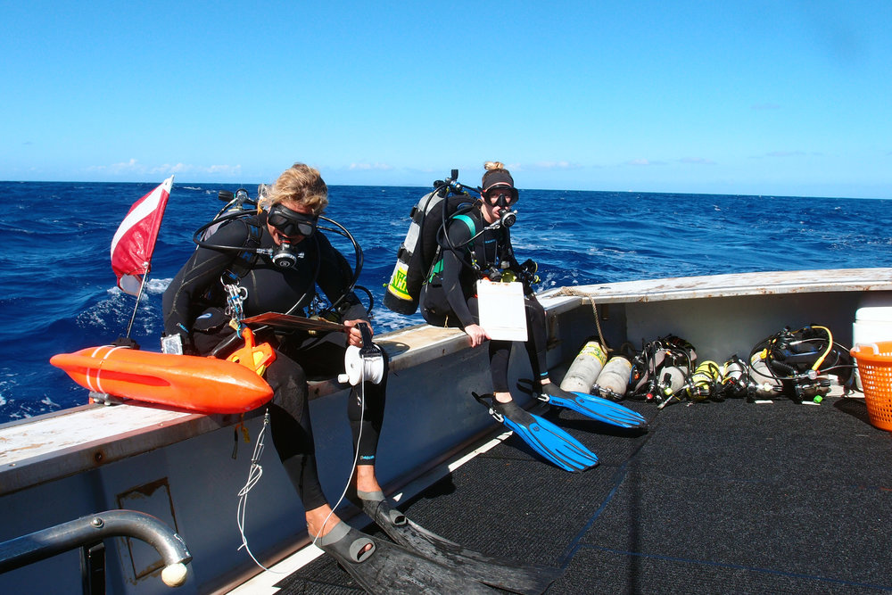 Scientists Elizabeth Kadison  and Sarah Heidmann prepare to dive into the deep waters of Grammanik Bank Photo courtesy of Jason Quetel