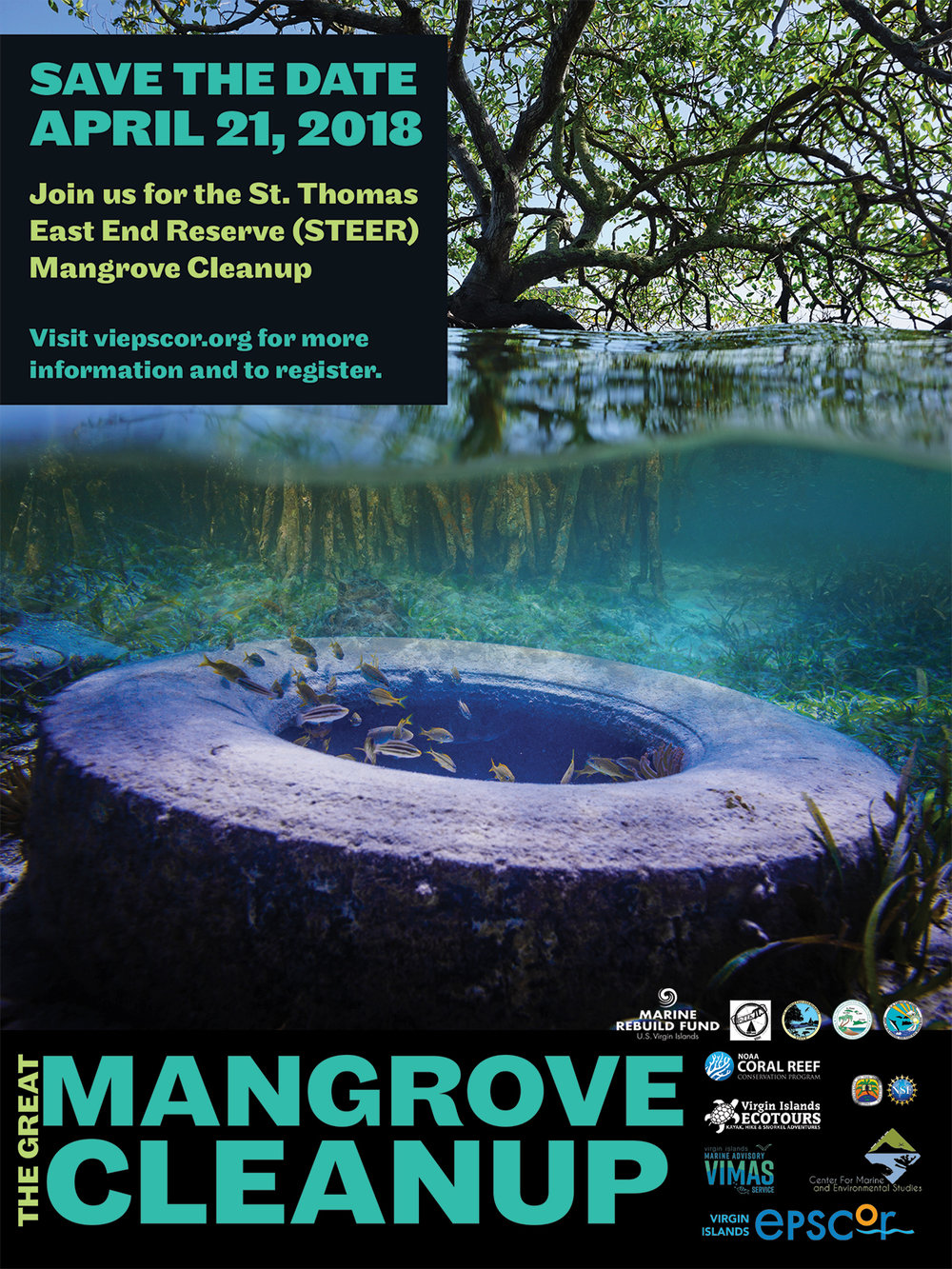 ƒ.Mangrove 6X8.jpg