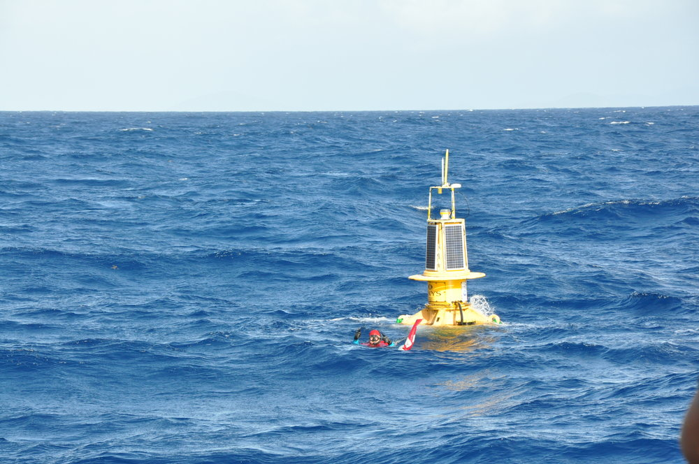 Dr. Paul Jobsis prepares the buoy by first securing it with a recovery line before releasing the anchor chain.