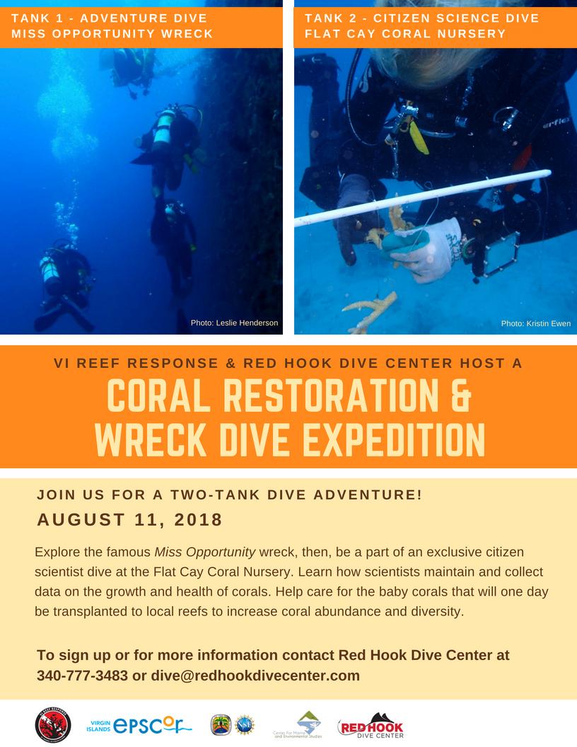 coral restoration & wreck dive-2.jpg