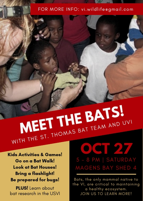 meet the bats!-2.jpg