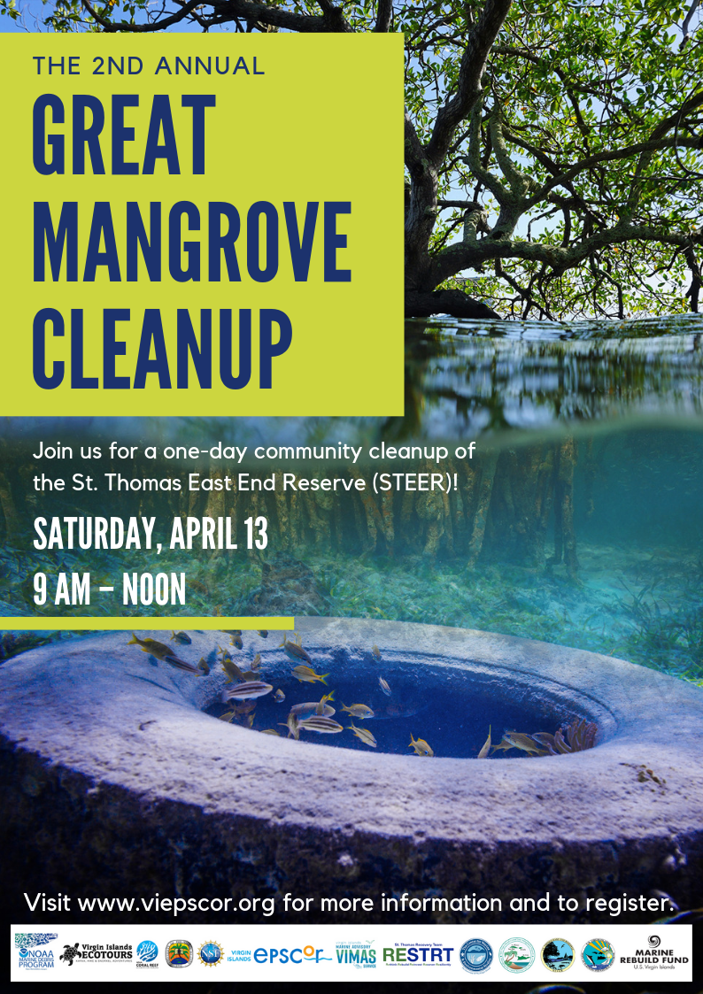 2019 Mangrove Cleanup.png