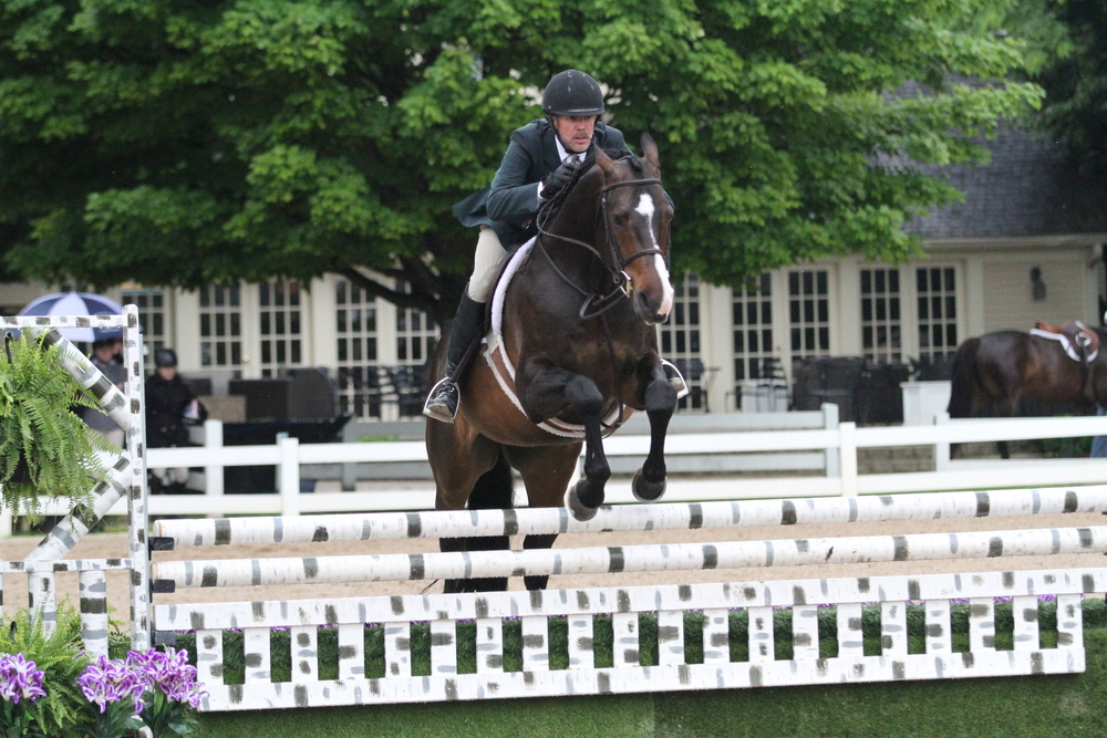 Calido's Son, ridden by Douglas Boyd and owned by Mimi Rothman, were Champions of the $2,500 Performance Working Hunter 3'6. Saville Row, owned by AE Swanson Farms LLC and ridden by Kara Raposa, earned the reserve championship.