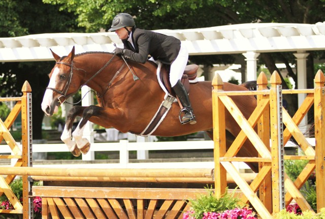 $1000 Amateur Adult Hunter 36-49    Call the Shots owned and ridden by Christie Rugh-Bileddo