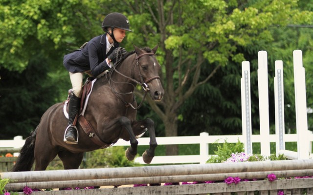 Small Pony Division Champion    Benlea Mizzou owned and ridden by Olivia Markman
