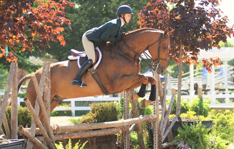 Marshall & Sterling Junior/Amateur Horsemanship Medal    Madison Potts took the Horsemanship Medal with her horse Czech Point.