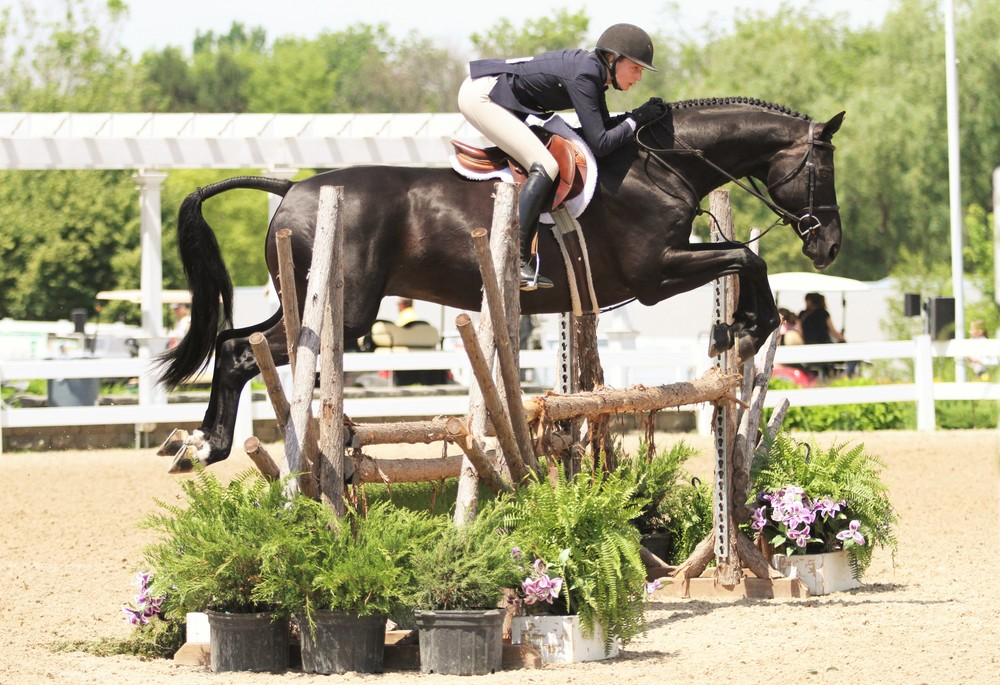 Duet and Paige Junker Large Junior Hunter 16-17 Champion $1000 Junior Hunter Classic Duet and his owner/rider Paige Junker were in tune this weekend, finishing at the top of the Large Junior Hunter 16-17 division. The pair also won the $1000 Junior Hunter Classic