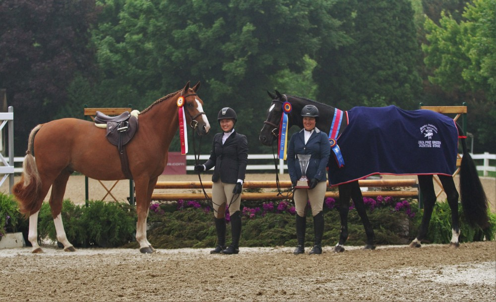 $2,500 USHJA Pre Green Incentive Stake Kathleen Caya took the top two spots in the Pre Green Incentive Stake as with her horse Zorro as champion and Melissa Hirt's entry Valcony in reserve.