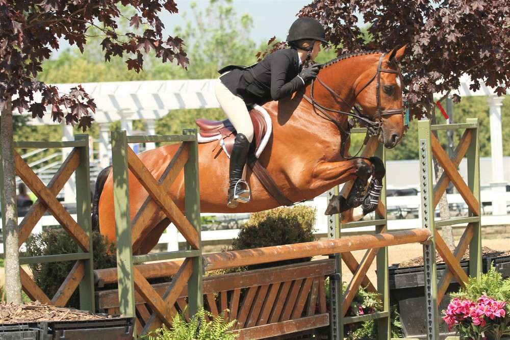 Equitation 12-14 Champion  Charlotte Novy, with her horse Cimberly, bested the Equitation 12-14 division