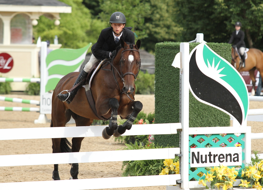 Brian Moggre in the Equitation Challenge with Viceroy, owned by Bethany Bolen