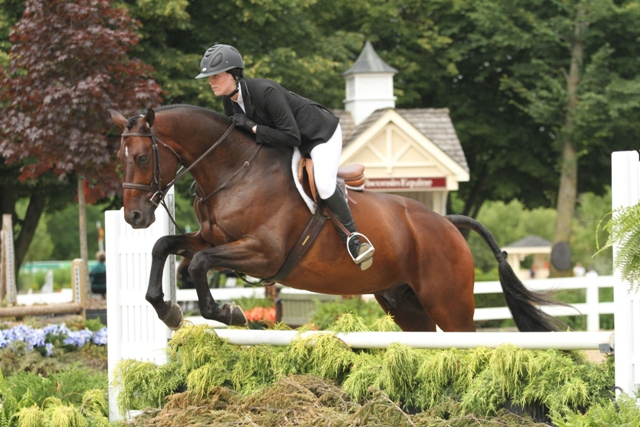 $1,000 Amateur Adult Hunter 18-35 Champion Counting Stars, owned by Kim Calamos and ridden by Kaitlyn Calamos