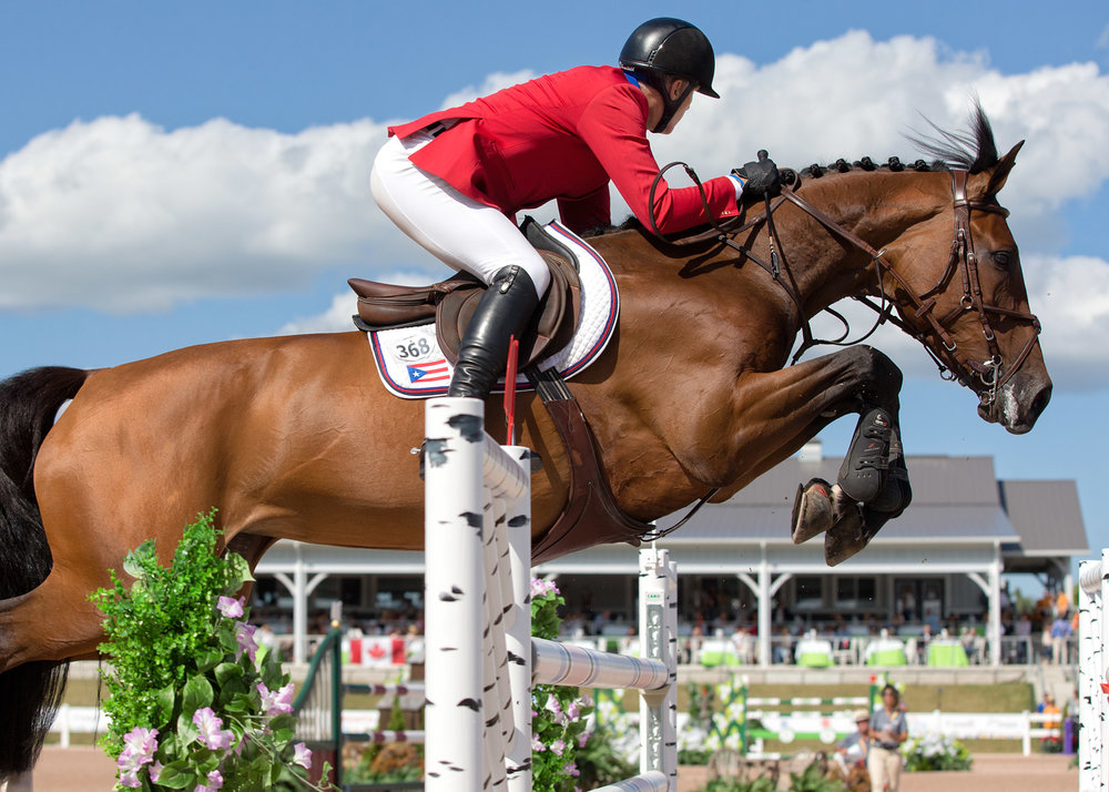 Freddie Vazquez and Esprit De Vie at the Pan Am Games in Toronto. Photo by Cealy Tetley