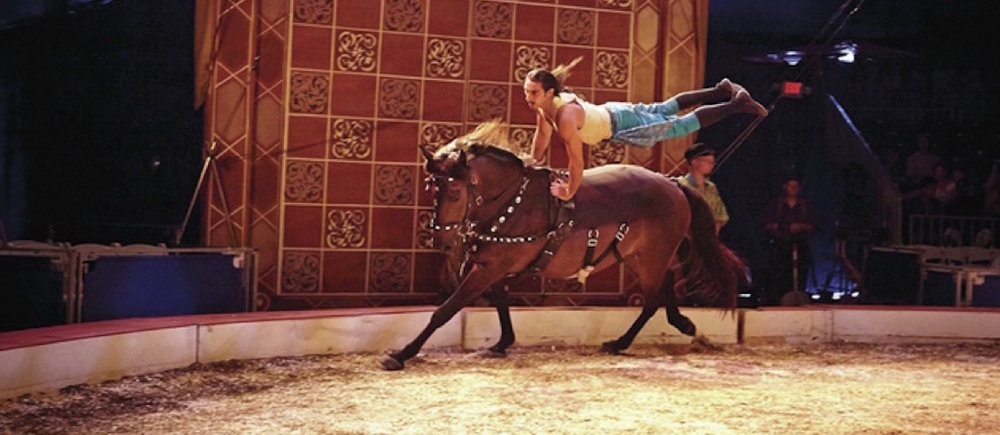 Former Cavalia performer Caleb Carinci Asch performs incredible feats with his horses. Photo courtesy of Carinci Asch.