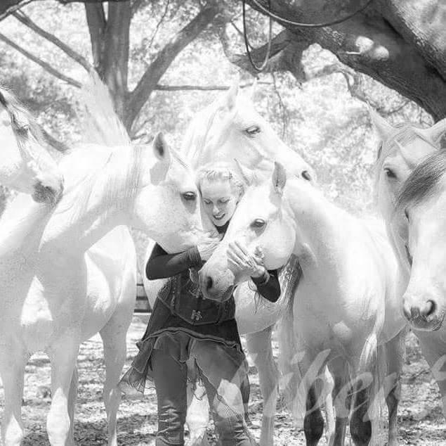"Sylvia Zerbini and her liberty stallions will perform in ""Althea."" Photo courtesy of Sylvia Zerini."