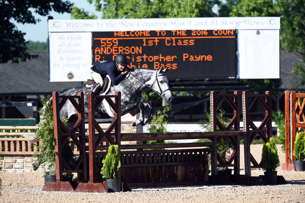Christopher Payne and Anderson, owned by Debbie Bass. Photo by Anne Gittens Photography.