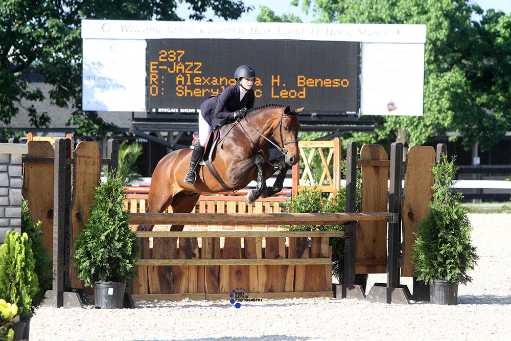 Alexandria Beneson and E-Jazz on Equitation Day. Photo by Anne Gittins Photography.