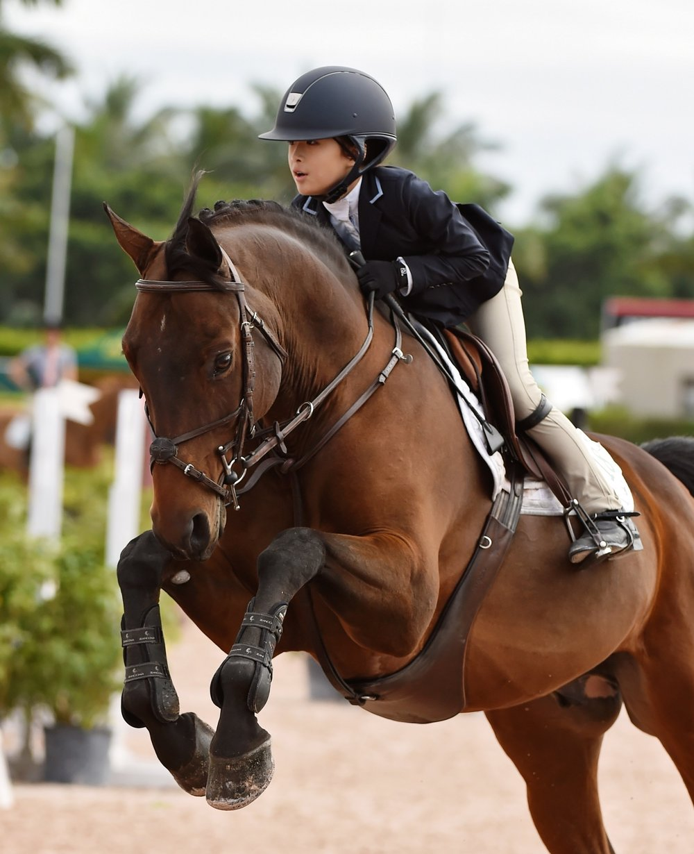 Chloe Jhin and Liberty have been a successful pair. Here they are during WEF. Photo by Anne Gittins Photography.