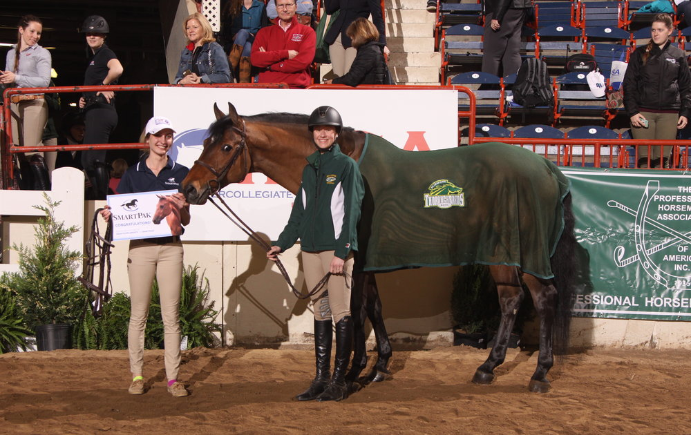 Clay, owned by Skidmore College, was awarded the SmartPak Most PoularHunter Seat Horse. Photo by  alcookphoto.com