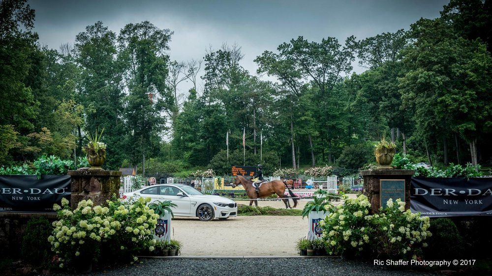 The Monmouth at the Team featured event at Hamilton Farm on Thursday is the $10,000 Bobcat Derby, presented by The Nature Conservancy. Photo by Ric Shaffer Photography