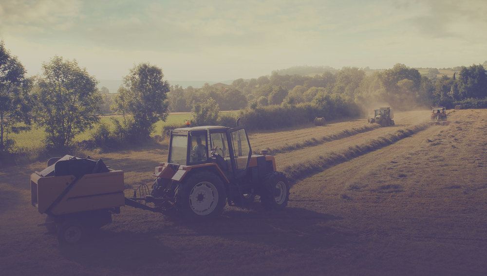 Eastern Hay produces a significant percentage of the hay they sell. Photo courtesy of Eastern Hay