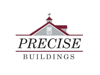 NEW_Precise_Logo_CMYK CROP.jpg
